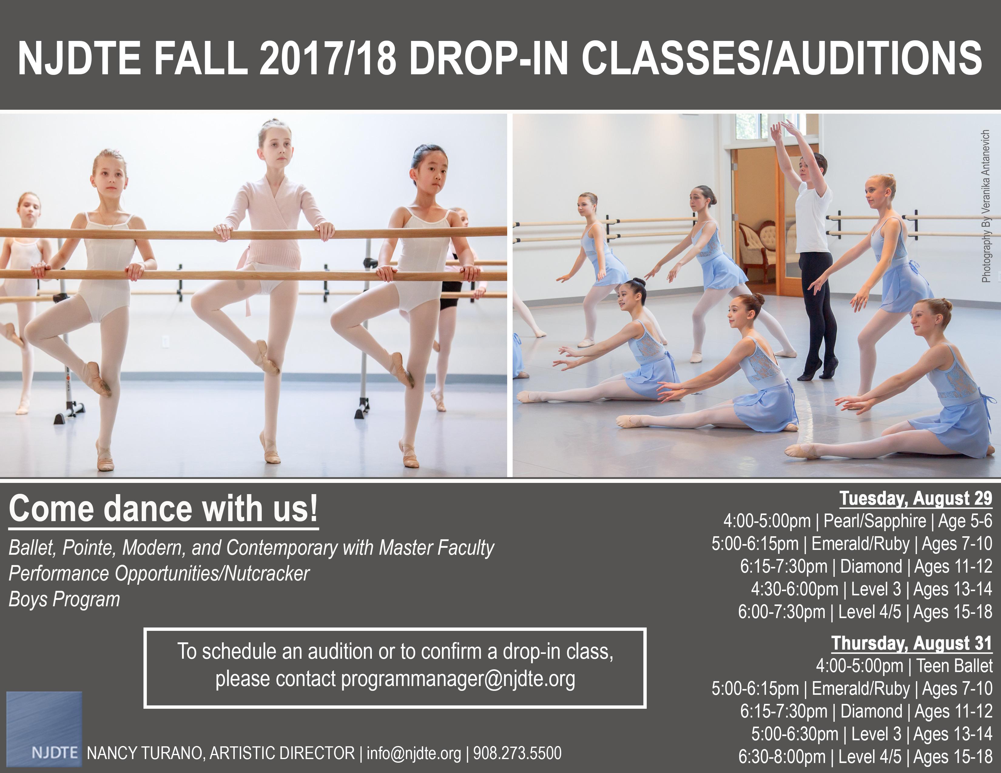 njdte 2017-18 auditions | new jersey dance theatre ensemble